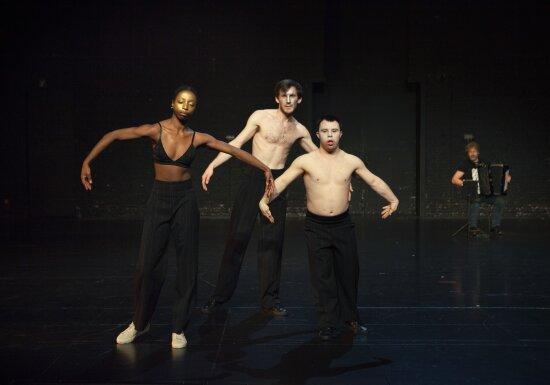 The Goldberg Variations | Michiek Vandevelde
